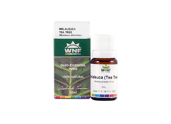 Óleo essencial Melaleuca - Wnf