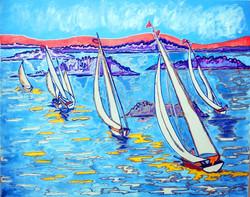 Sailing Regatta in San Francisco Bay