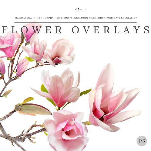 FLOWER OVERLAYS