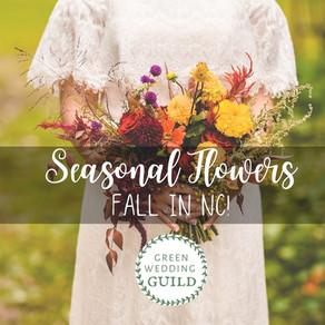 Seasonal Flowers: Fall in NC!