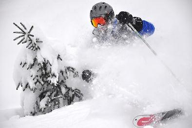 Skier, Deep Powder - Ski Expo