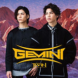 gemini_type_a.jpg