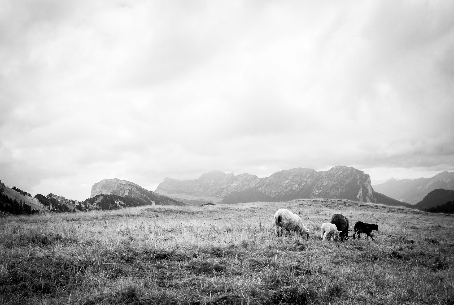 L'Alpette et le Col de Bellefond
