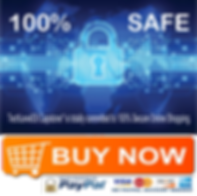 TechLevel33 Safe and Secure Online Shopping