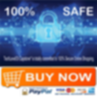 Online Secure Shopping