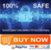 TechLevel33 Secure Shopping