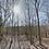 Thumbnail: 0.54 Acres (Benton County AR)