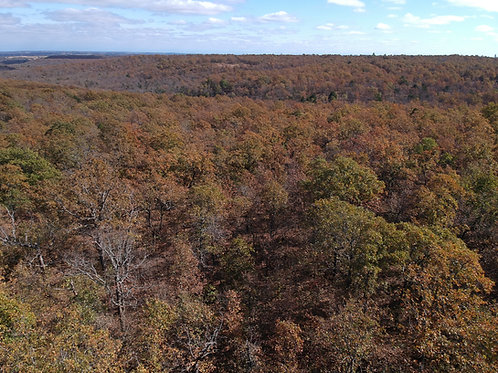 5 Acres Untamed Wilderness (Hughes County OK)