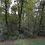 Thumbnail: 0.35 Acres (Benton County AR)