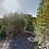 Thumbnail: 0.26 Acres | Fairfield Bay, AR