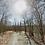 Thumbnail: 0.54 Acres   Bella Vista, AR