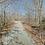 Thumbnail: 0.31 Acres (Benton County AR)