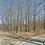 Thumbnail: 0.25 Acres (Benton County AR)