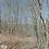 Thumbnail: 0.62 Acres (Benton County AR)