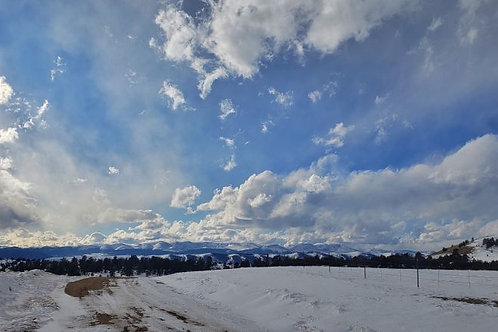 40 Acre Hunting Paradise (Park County CO)