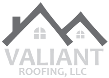 ValiantLogoArtboard 9300x.png