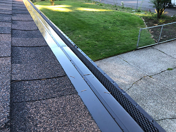 Gutter Cover Installed.jpg