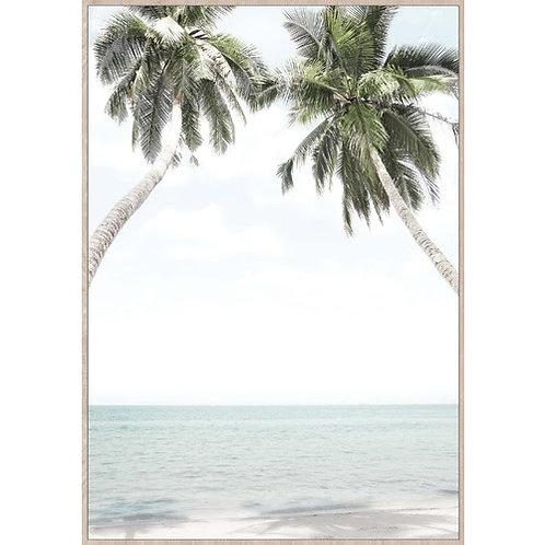 Palms in Love