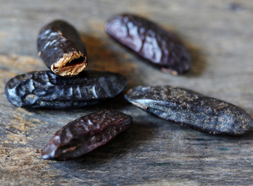 La fève tonka: une épice controversée à découvrir