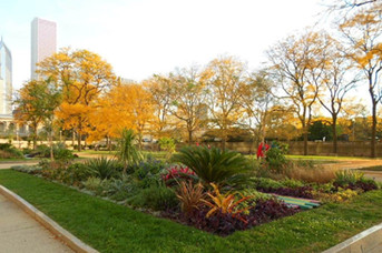Grant Park gardens on Michigan Ave