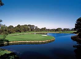 Amelia River Golf.jpg
