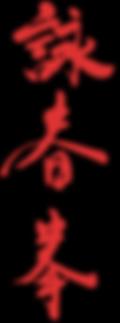 ving tsun wing chun kung fu arti marzali roma