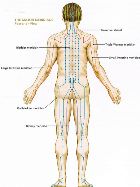 ACUPUNCTURE VS DRY NEEDLING - WHAT'S THE DIFFERENCE?