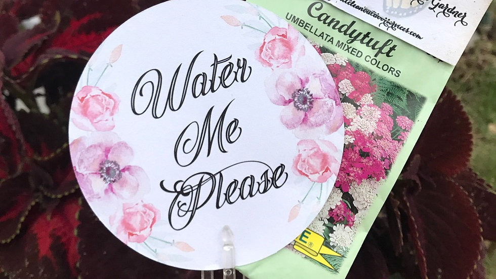 """4"""" Circle Tags or Cards - Any Design"""