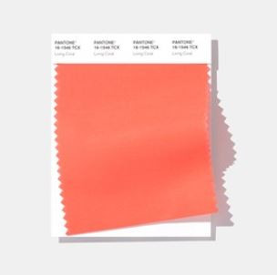 Living Coral - 2019 Pantone Color of the Year!