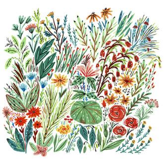 FlowerFields_4_Web.jpg