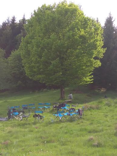 כסאות ליד העץ.jpg