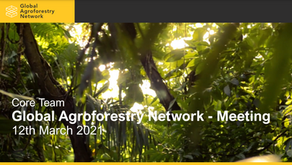 GAN scientists call for a multi-stakeholder approach to bring high-tech in global agroforest reseach