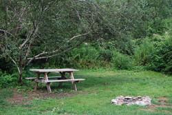 camp photo 6