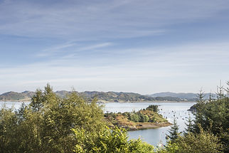 View from Crinan forest in Scotland..jpg
