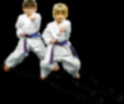 Master H C Kim's Kid's Martial Arts Classes in Overland Park, KS | Children's Program Button