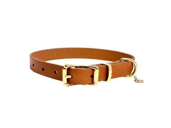 Essential Collection Leather Collar