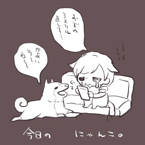 01今日のにゃんこ