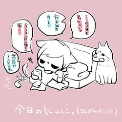 02今日のにゃんこ