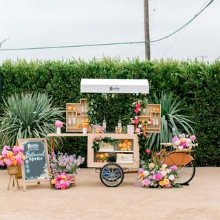 Plant Flower Installation