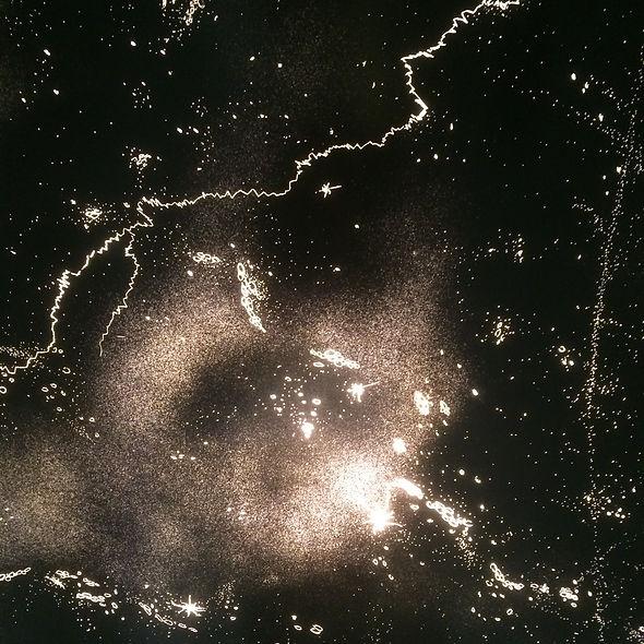 Cosmos-détail2.jpg