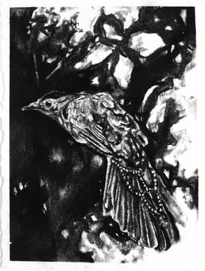 Emma Vidal, Oiseaux I6