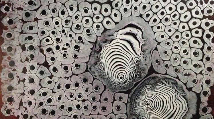 Silvère Jarrosson, Sans titre, acrylic on canvas, 2013, 62x48 cm