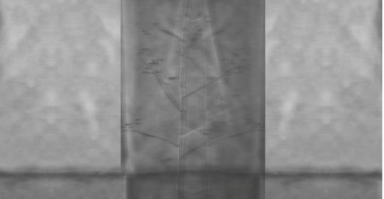 Thiago Berzoini, Our shroud at night, 2015, composition photographique, 30 x 40 cm
