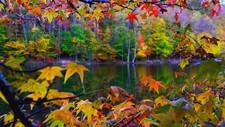Dugnad høsten 2020
