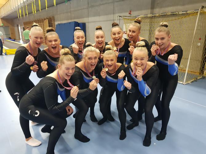 Nordisk mesterskap i TeamGym Senior