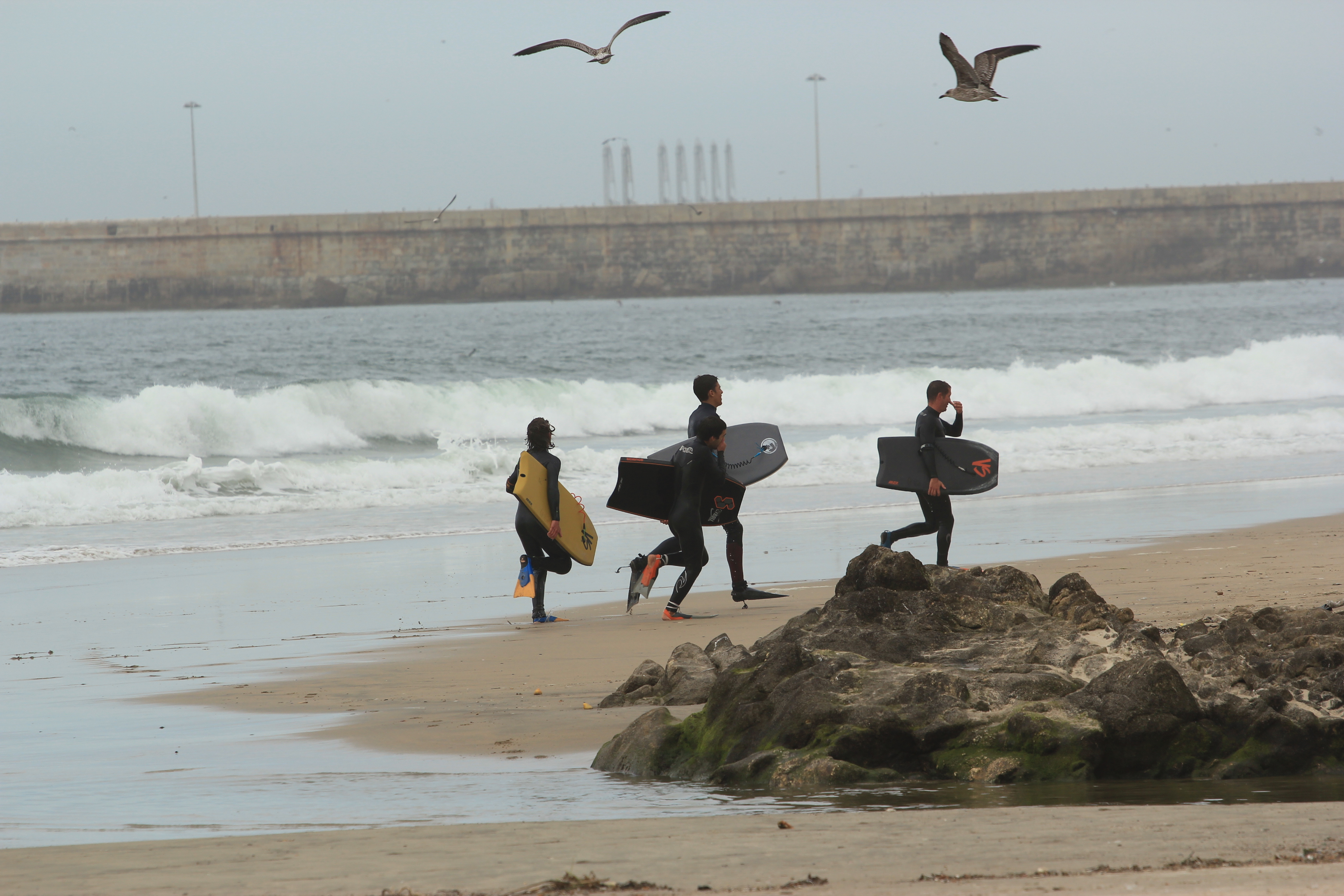 Linha de Onda - Surfing School 2016