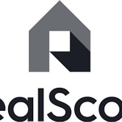 RealScout Webinar
