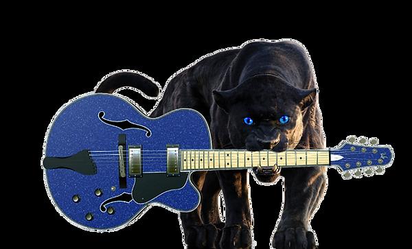 RSTE CAT W GUITAR 23.png