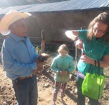 veterinarian in Mexico