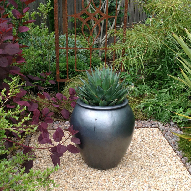 Plant Passion Garden